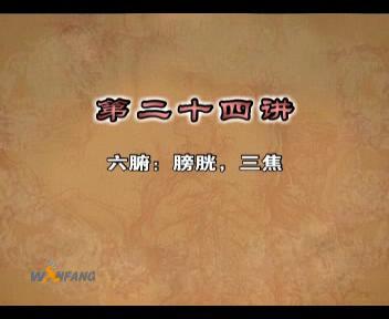 中医基础理论视频17_中医基础理论-医学视频-万方医学网
